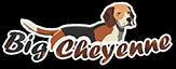 Big Cheyenne